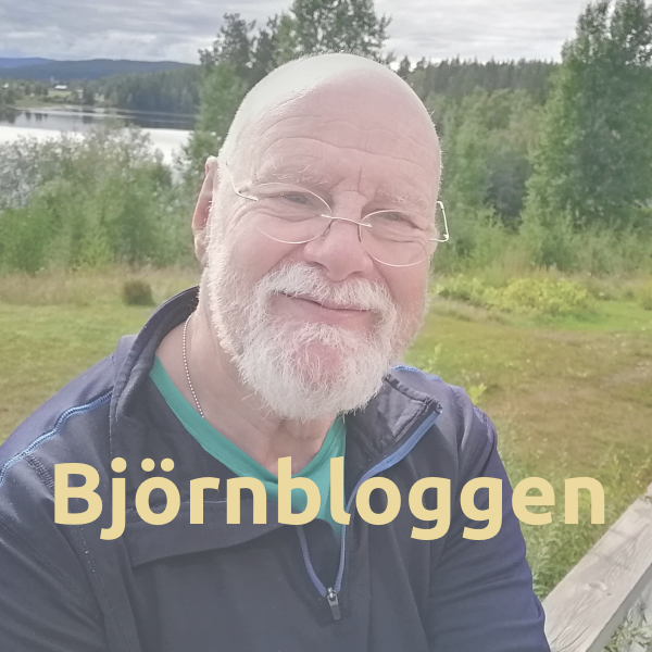 Björnbloggen